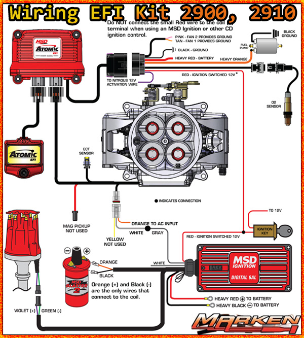 msd atomic efi for ls engines ecu  harness marken performance