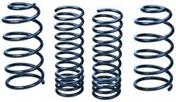Ford Racing - Spring Kit - Ford Racing M-5560-ZXM1 UPC: 756122100295 - Image 1