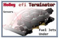 Holley efi Systems